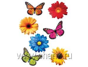 Рисунки цветов и бабочек